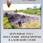 Древние поселения Алтая: археологи пишут историю