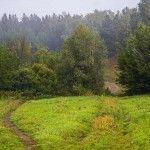 Акутиха. Дорога в лес