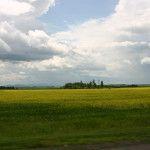 Фото_3_климат С сайта Село22b291