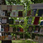 «Мой Пушкин»: литературно-музыкальные диалоги в «Шишковке»