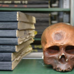 «Войдя в библиотеку, вы попадете в грезы!»
