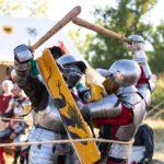 «Открытая библиосреда»: средневековые рыцари идут на штурм «Шишковки»