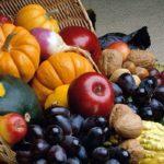 «Праздник урожая»