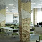 «Шишковка» зовет увидеть результаты модернизации пространства