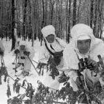 «В Сибири не было войны…»