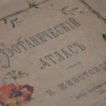 «История одного шедевра»: ботанические иллюстрации для любования и просвещения